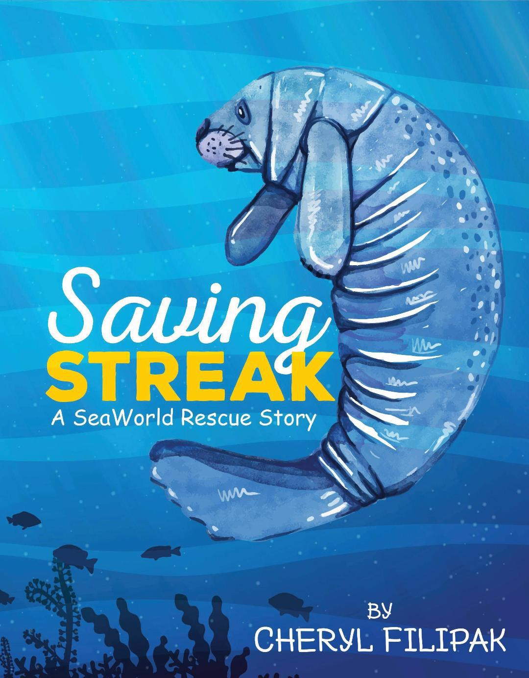 Saving Streak Cover Page